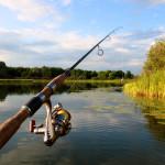 Bolj se splača loviti ribe kot klicati stranke, o katerih ničesar ne veš