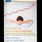 Finančni in poslovni kazalniki uspešnosti podjetja