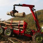 Razpis za pridobitev sredstev na področju prve predelave lesa
