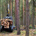 Sofinanciranje mehanizacije za sečnjo in spravilo lesa